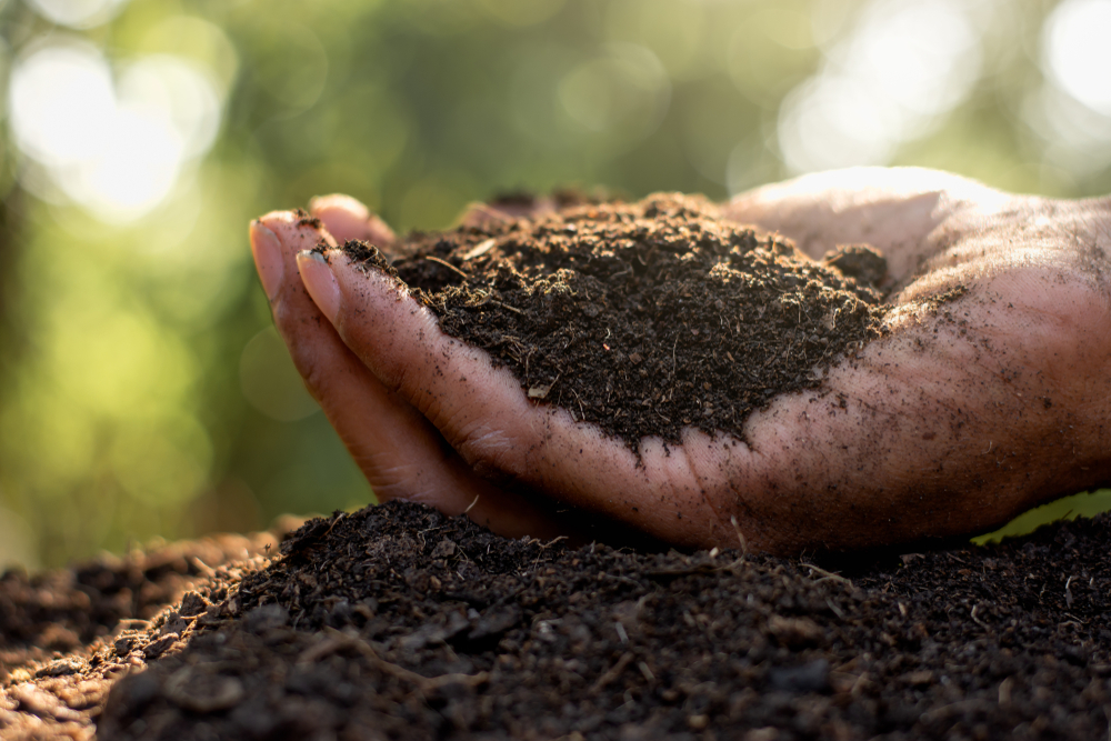 Soil Injection